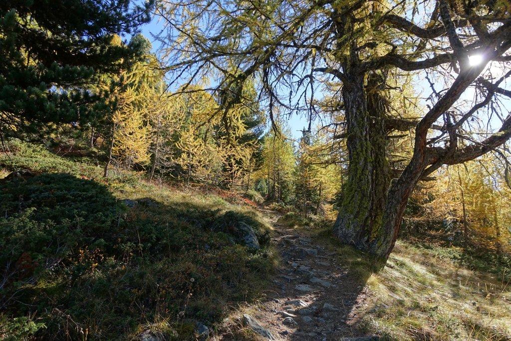 Chandolin, Pas de l'Illsee, Waschsee, Illsee, Lac noir, Illpass, La Grande Remointse, Chandolin (07.10.2017)