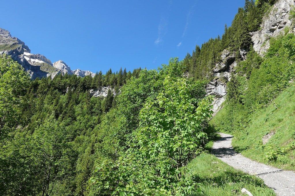 Grand-Paradis, Barme, La Berthe, Col de Cou (23.06.2019)