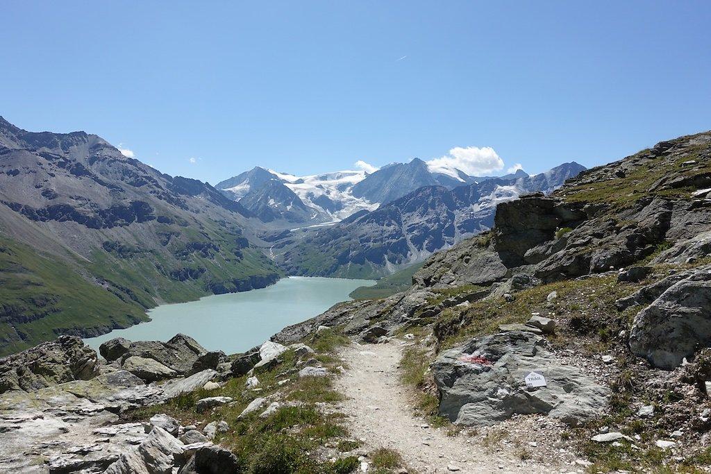 Dixence, Col des Roux, Prafleuri (20.08.2019)