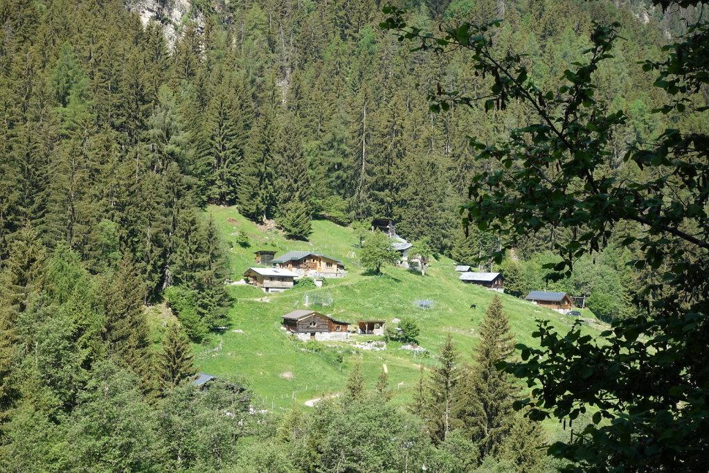 Mayens de Réchy, Alpage de Bouzerou (31.05.2020)