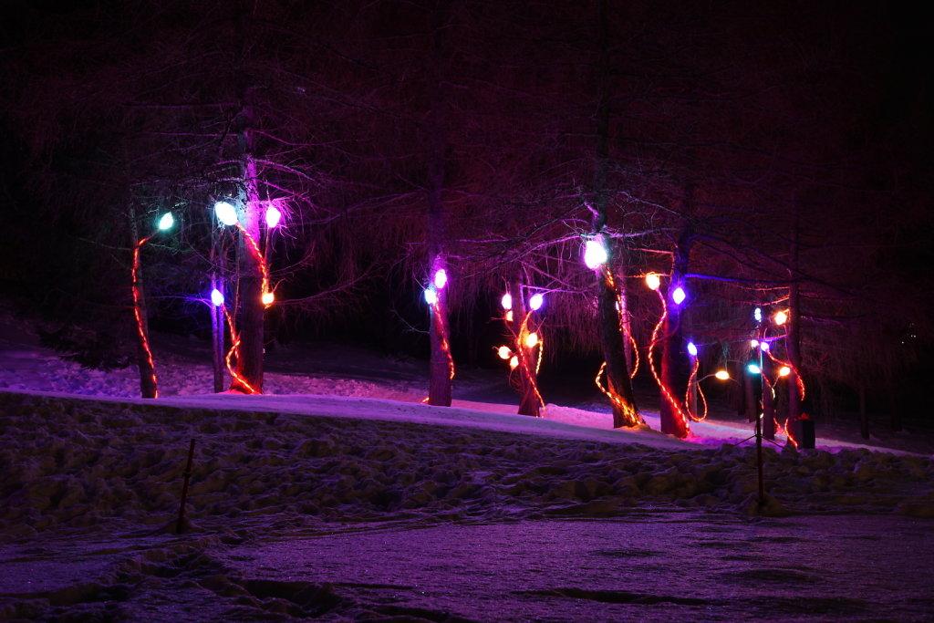 Chemin des lanternes, Montana (12.01.2020)